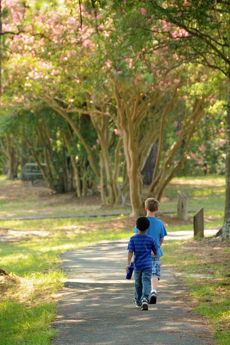 Health and climate both benefit from green space